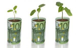 reshil-ne-vyplachivat-dividendy-za-2012